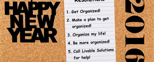 Happy New Year – Let's Make an Organizing Plan!
