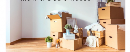 Day Fourteen: 40 Bags in 40 Days Decluttering Challenge – Estate Clear Outs